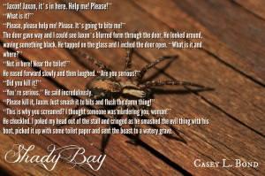 shady bay teaser