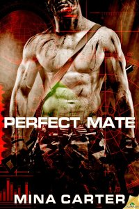 Perfect Mate Cover